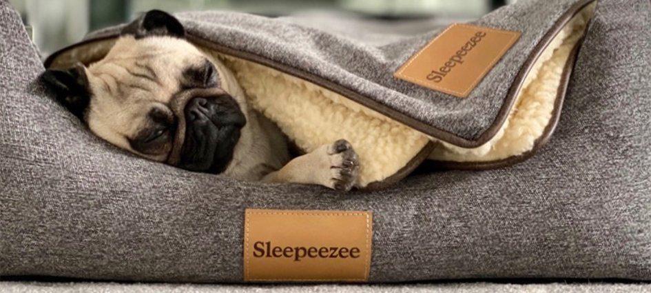 Sleepeezee pewter dog bed with a dog lying in it and Sleepeezee blanket